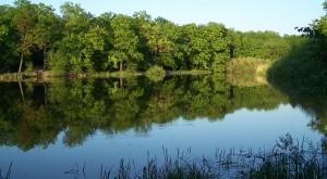 Jezioro_Dziewicze